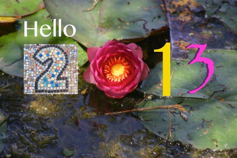 Vœux 2013 (2)