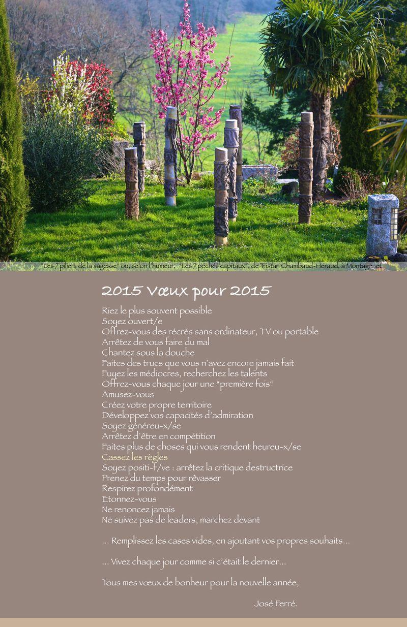 Vœux-2015-web