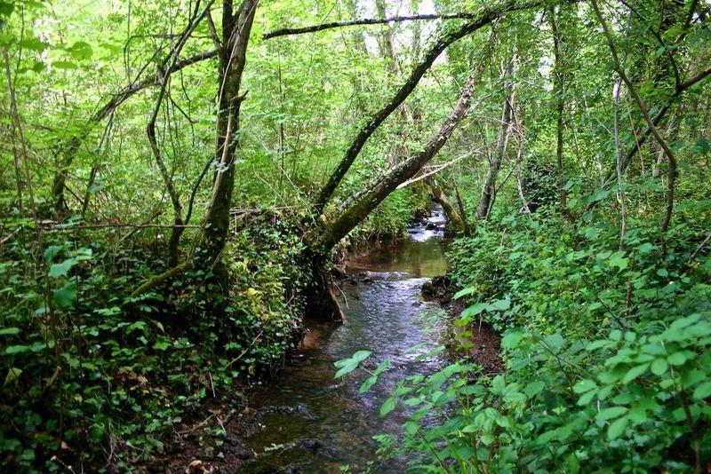 Montagenet - Le ruisseau des Vergnes