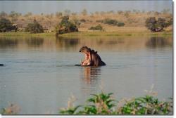 Le_fleuve_niger