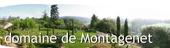 Vignette_blog_montagenet